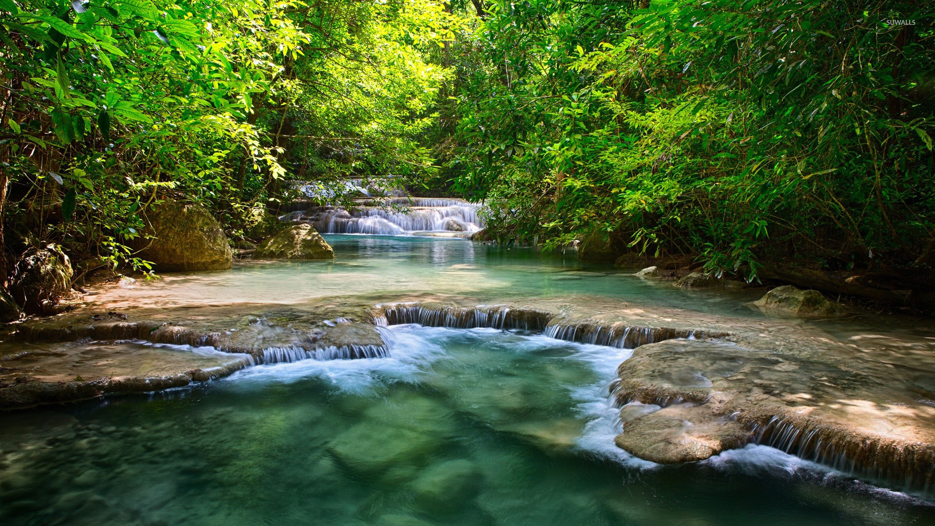 Forest Waterfall Wallpaper Nature Wallpapers 22452