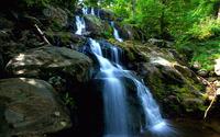 Forest waterfall [2] wallpaper 1920x1200 jpg