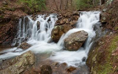 Forest waterfall flowing alongside the rocky river wallpaper