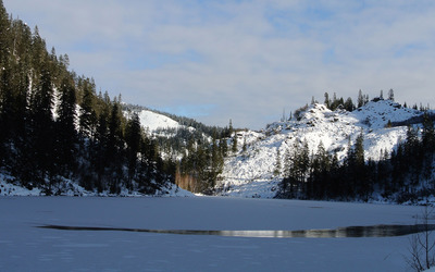 Frozen lake surrounded by pine forest wallpaper