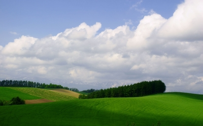 Fuzzy clouds above a small forest on a green hill wallpaper