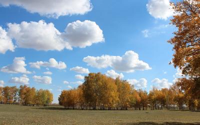 Fuzzy cloudy sky Wallpaper