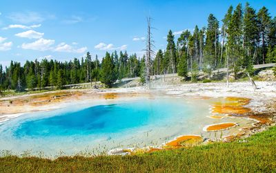 Geyser in Yellowstone National Park wallpaper
