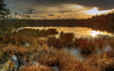 Gilded sunset reflection in the small lake Wallpaper