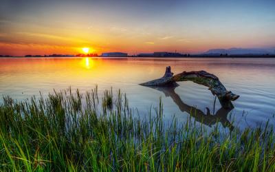 Golden sunset at the lake wallpaper