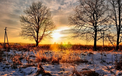 Golden sunset sky above the snowy nature wallpaper