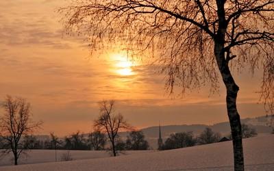 Golden winter sunset wallpaper