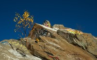 Graffiti on the rocky peak wallpaper 2560x1600 jpg