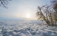 Gray sky over the snow wallpaper 2560x1600 jpg