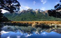 Green forest climbing the mountains towards the cliffs wallpaper 2560x1600 jpg