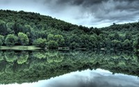 Green forest reflecting in the lake wallpaper 2560x1600 jpg