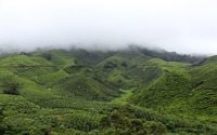 Green hills hiding in the fog wallpaper 2880x1800 jpg