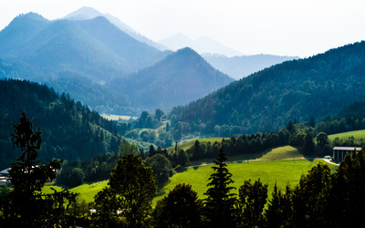 Green meadow seen from Mariazell wallpaper