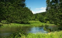 Green nature on a summer day by the river wallpaper 2560x1600 jpg