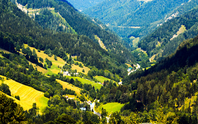 Green valley in Annaberg wallpaper