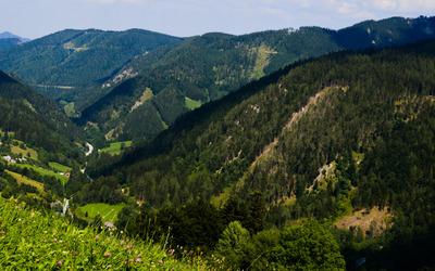 Green valley in Kernhof wallpaper