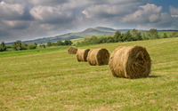 Hay bales on the meadow wallpaper 2880x1800 jpg