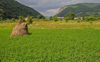 Haystack in the clover field wallpaper 2880x1800 jpg