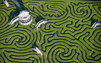 Hedge maze wallpaper