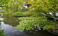 Japanese garden [2] wallpaper 2560x1600 jpg