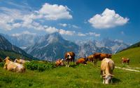 Karwendel wallpaper 2560x1600 jpg