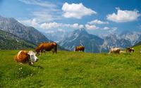 Karwendel [2] wallpaper 2560x1600 jpg