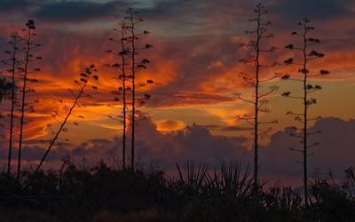 Kauai sunset Wallpaper