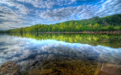 Lake Forest wallpaper