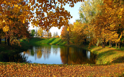 Lake in the autumn garden wallpaper