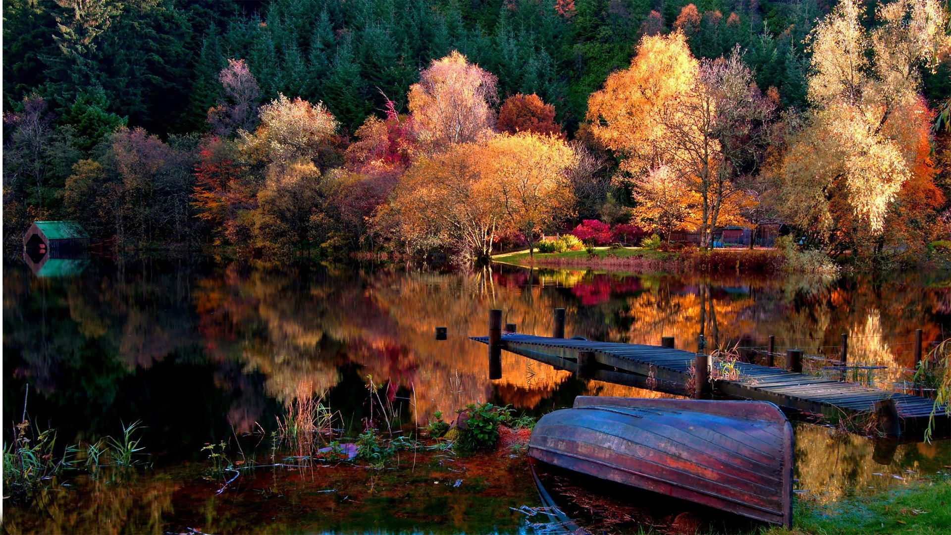 Lake In The Woods Wallpaper Nature Wallpapers 15494
