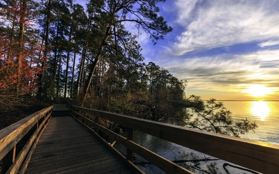 Lake Livingston State Park wallpaper