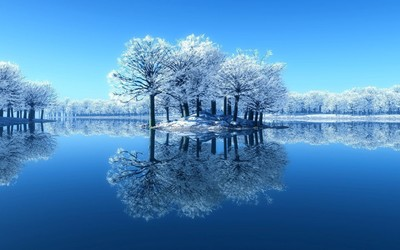 Lake reflecting the frosty trees wallpaper