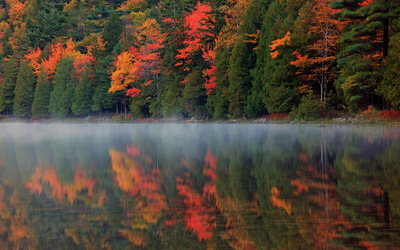 Lake reflection of the forest shades of autumn wallpaper