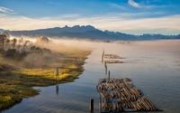 Logs on the foggy water wallpaper 2560x1600 jpg