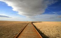 Long pier on the field wallpaper 1920x1200 jpg