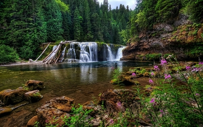 Lower Falls of the Lewis River wallpaper