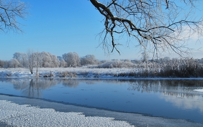 Melting ice in the river by the white trees wallpaper