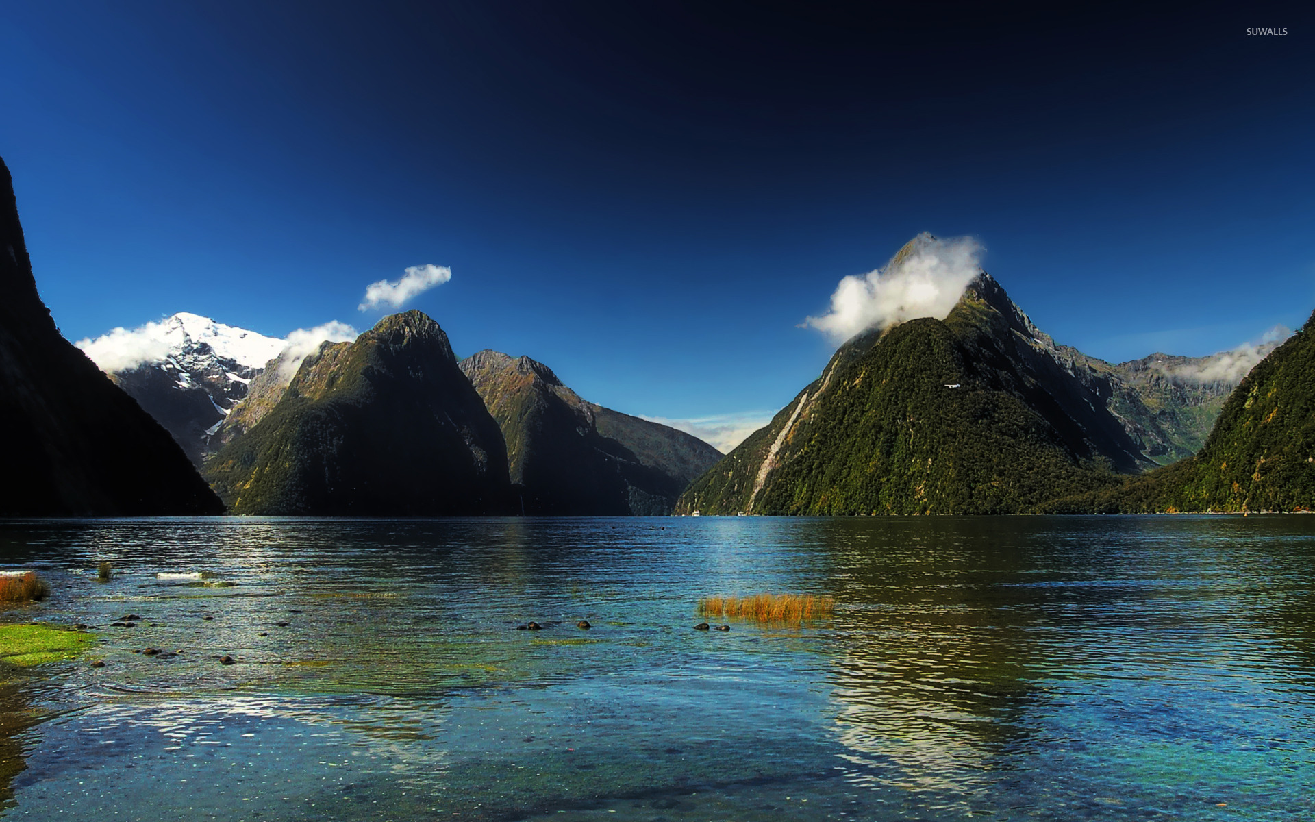 Milford sound new zealand wallpaper nature wallpapers for New wallpaper