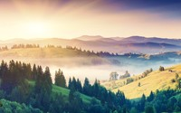 Misty morning in the hills wallpaper 2560x1600 jpg
