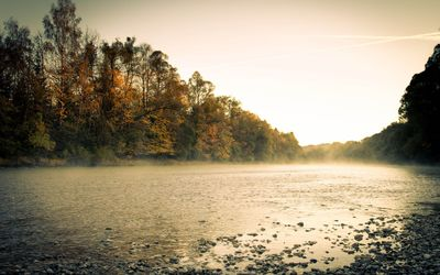 Misty river by the autumn forest wallpaper