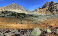 Mossy mountains wallpaper 2560x1600 jpg