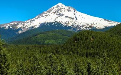 Mount Hood [3] wallpaper