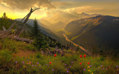 Mount Rainier National Park [2] wallpaper