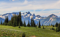 Mount Rainier National Park [3] wallpaper 1920x1200 jpg