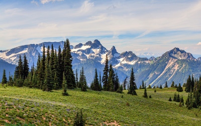Mount Rainier National Park [3] wallpaper