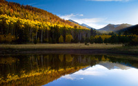 Mountain forest reflecting in the lake wallpaper 2560x1440 jpg