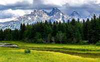 Mountain meadow wallpaper 2560x1440 jpg