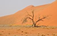 Namib Desert [6] wallpaper 3840x2160 jpg