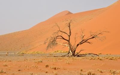 Namib Desert [6] wallpaper