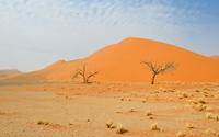 Namib Desert [5] wallpaper 3840x2160 jpg